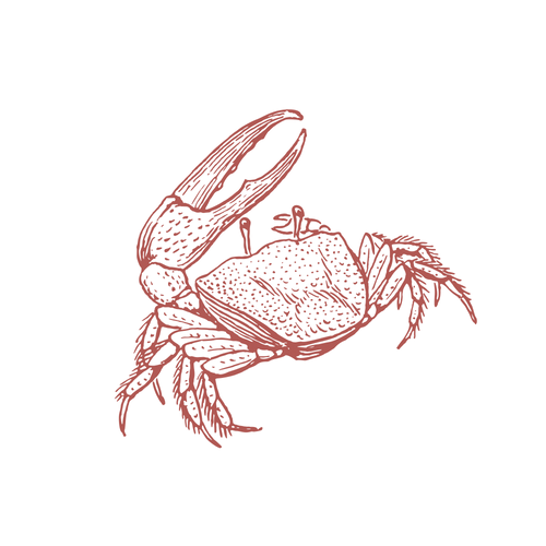 https://www.crabwinebeermendo.org/wp-content/uploads/2019/06/Crab.png